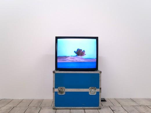 """Water and Smoke, video loop, 6' 30"""", 2010"""